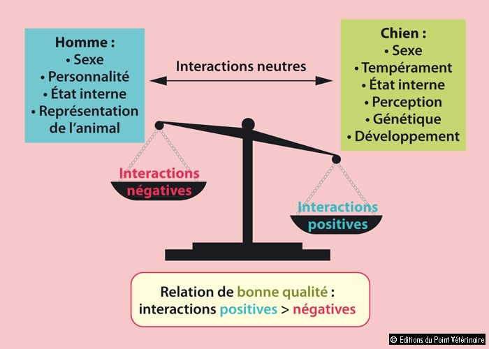 balance des interactions