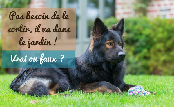 Rencontres dylas