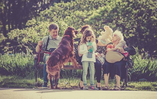 famille chien